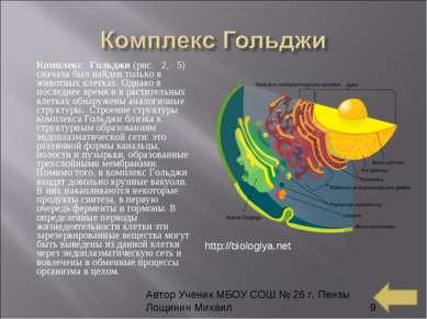 Комплекс Гольджи(рис. 2, 5) сначала был найден только в животных клетк...
