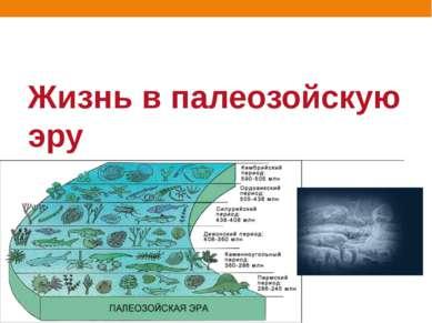 Жизнь в палеозойскую эру
