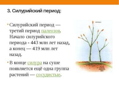 3. Силурийский период: Силурийский период — третий период палеозоя. Начало си...