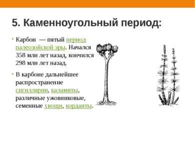 5. Каменноугольный период: Карбон — пятый период палеозойской эры. Начался 35...