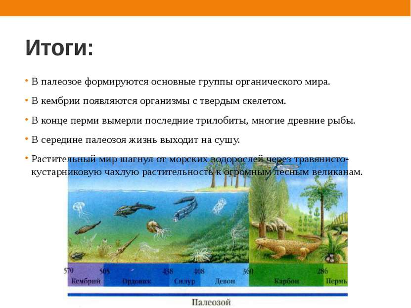 Итоги: В палеозое формируются основные группы органического мира. В кембрии п...