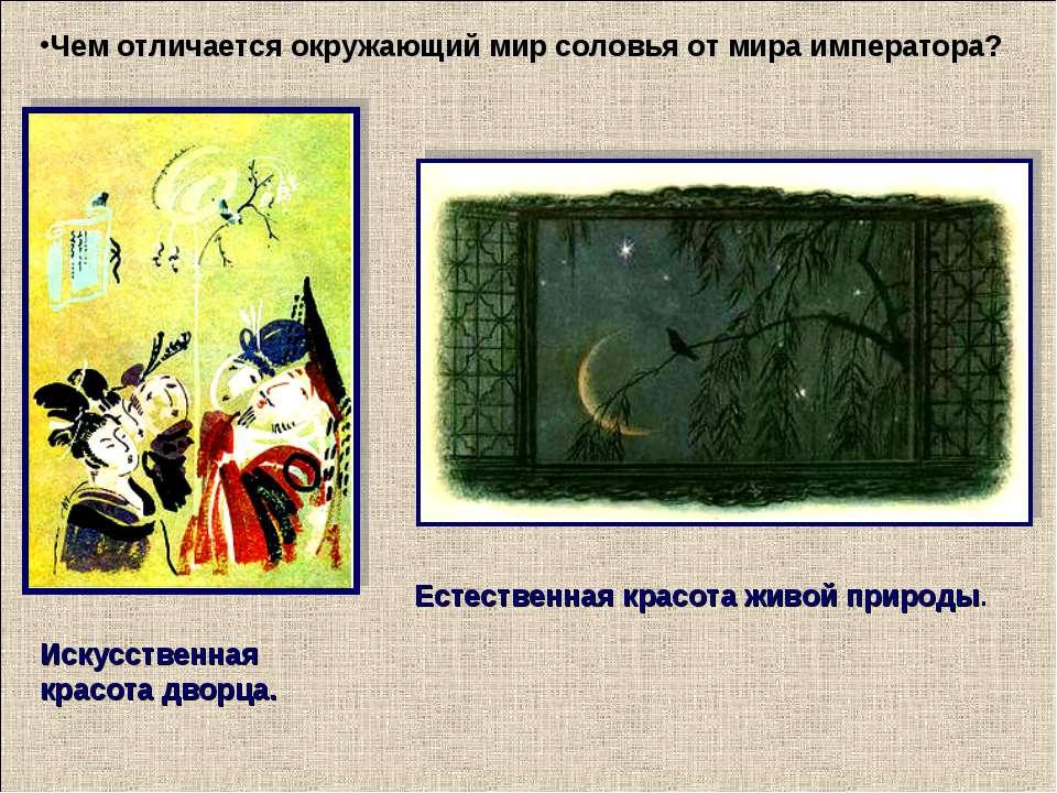 Чем отличается окружающий мир соловья от мира императора? Естественная красот...