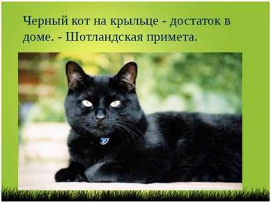 Черный кот на крыльце - достаток в доме. - Шотландская примета.