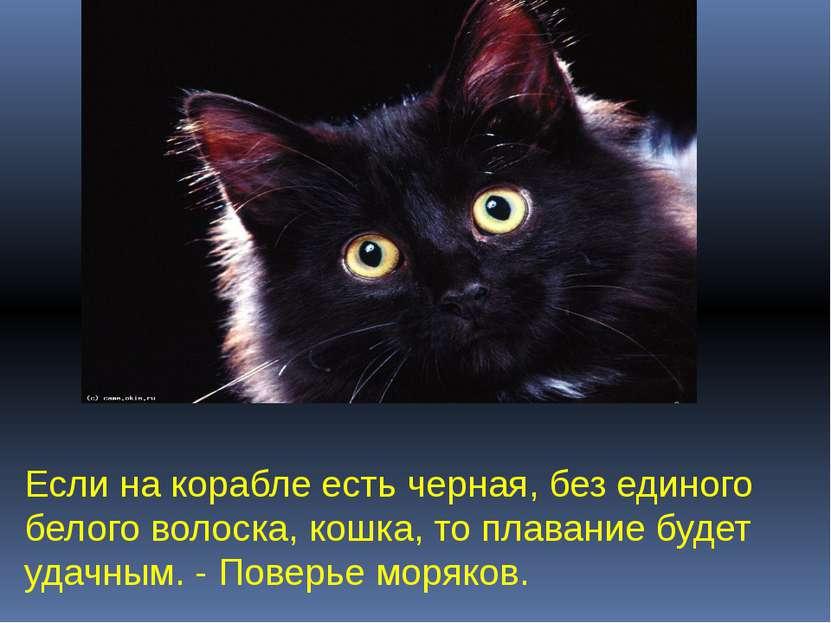 Если на корабле есть черная, без единого белого волоска, кошка, то плавание б...