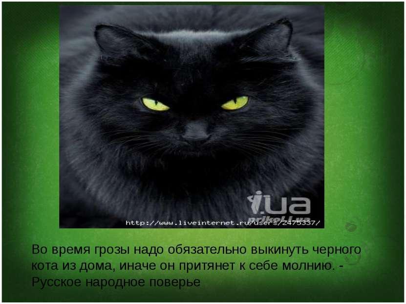 Во время грозы надо обязательно выкинуть черного кота из дома, иначе он притя...