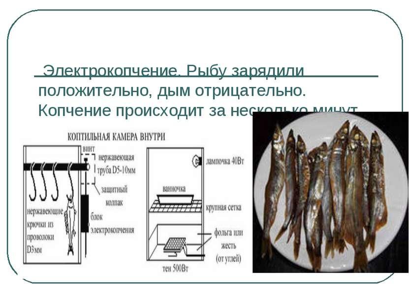 Электрокопчение. Рыбу зарядили положительно, дым отрицательно. Копчение проис...