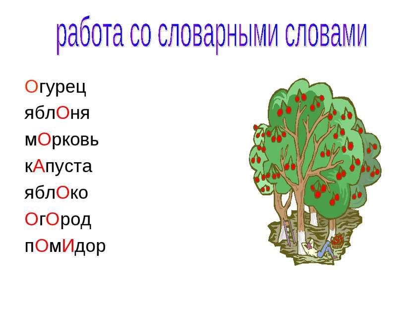 Огурец яблОня мОрковь кАпуста яблОко ОгОрод пОмИдор