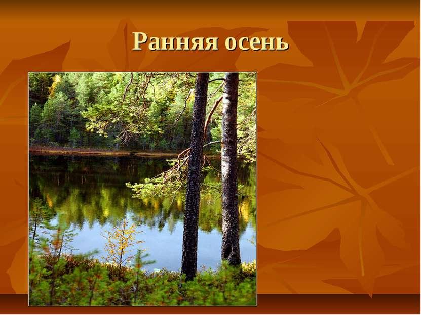 сочинение по русскому языку на тему золотая осень в карелии мешков в.в