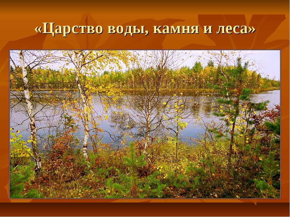 «Царство воды, камня и леса»