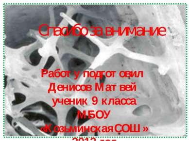 Работу подготовил Денисов Матвей ученик 9 класса МБОУ «КозьминскаяСОШ» 2012 г...