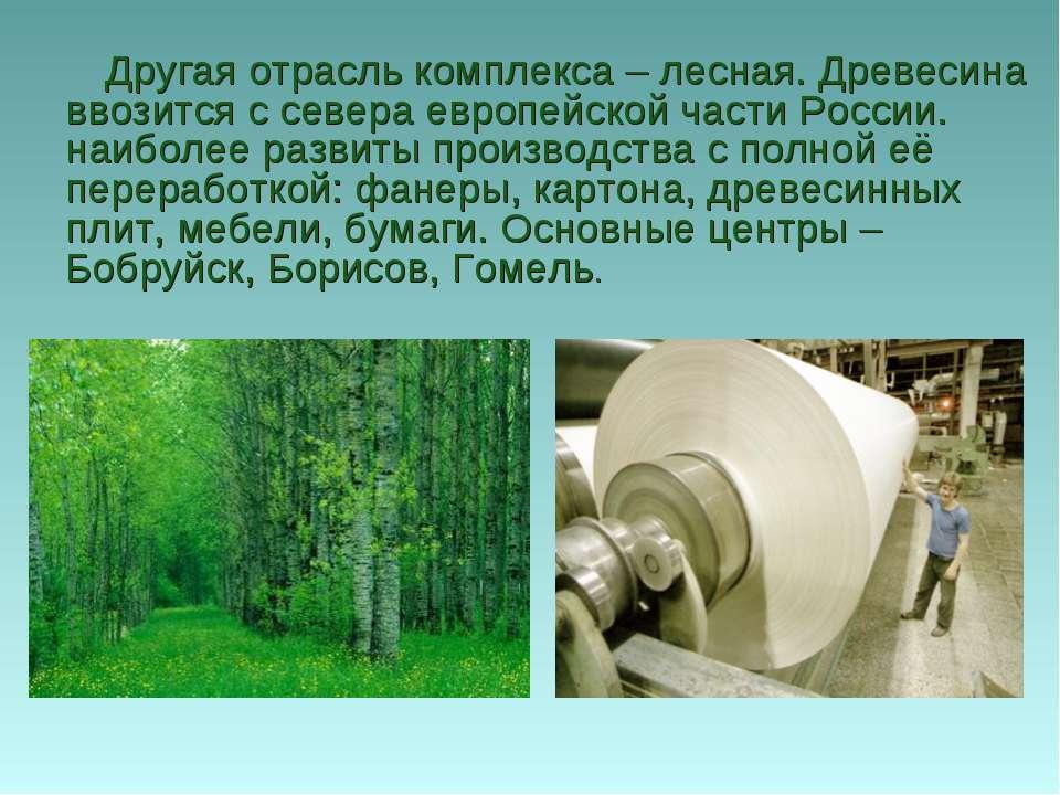 Другая отрасль комплекса – лесная. Древесина ввозится с севера европейской ча...