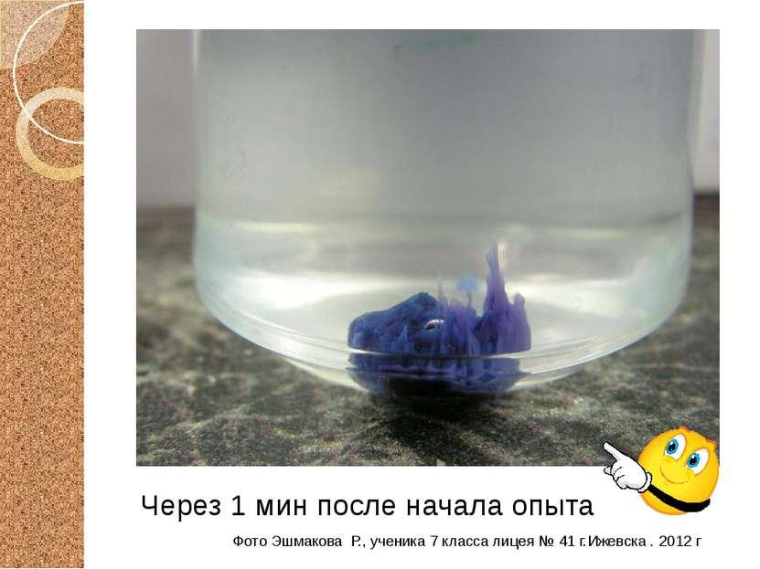 Через 1 мин после начала опыта Фото Эшмакова Р., ученика 7 класса лицея № 41 ...