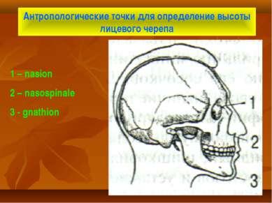 Антропологические точки для определение высоты лицевого черепа 1 – nasion 2 –...