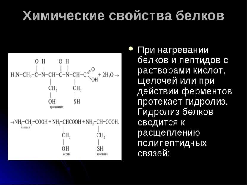 Химические свойства белков При нагревании белков и пептидов с растворами кисл...