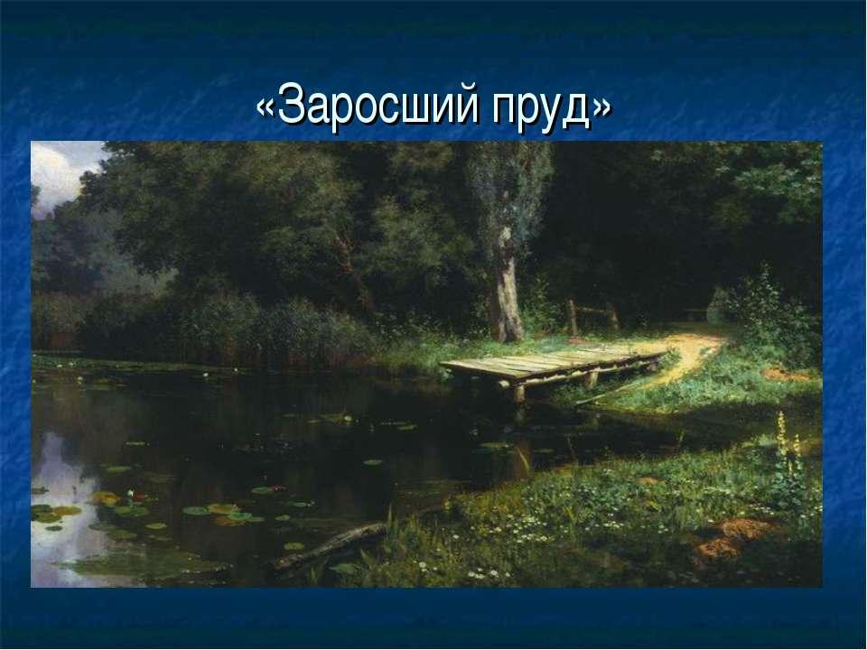 «Заросший пруд»
