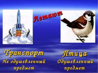 Летают Транспорт Птица Не одушевленный предмет Одушевленный предмет