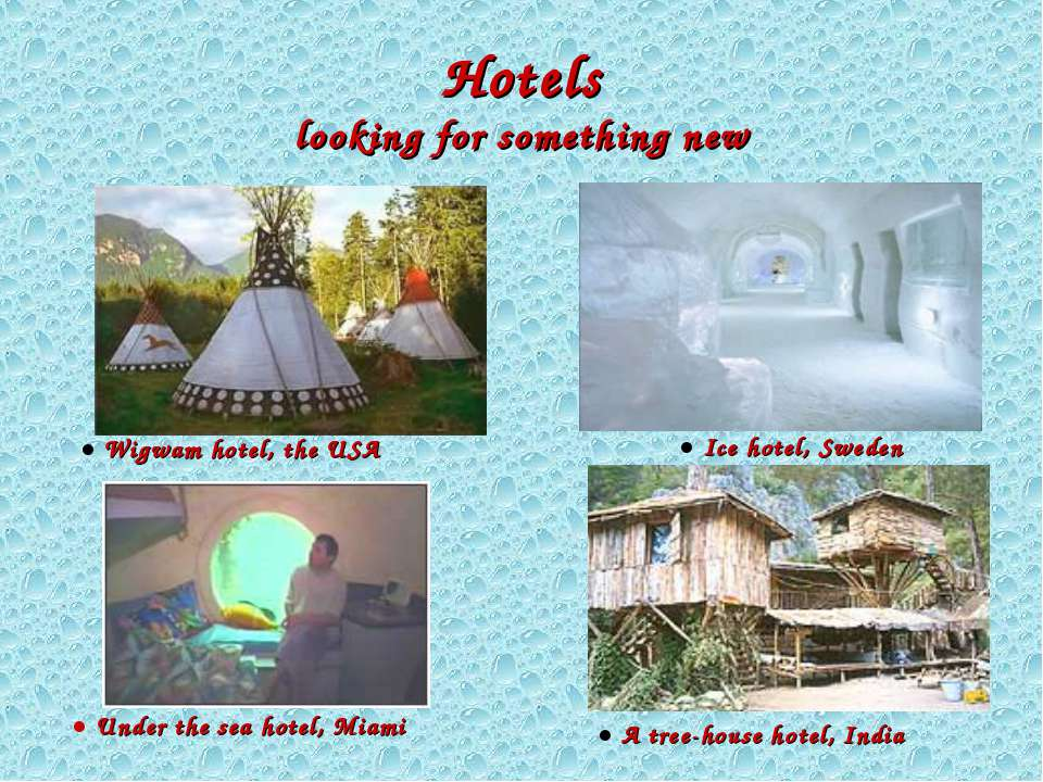 Hotels looking for something new ● A tree-house hotel, India ● Ice hotel, Swe...
