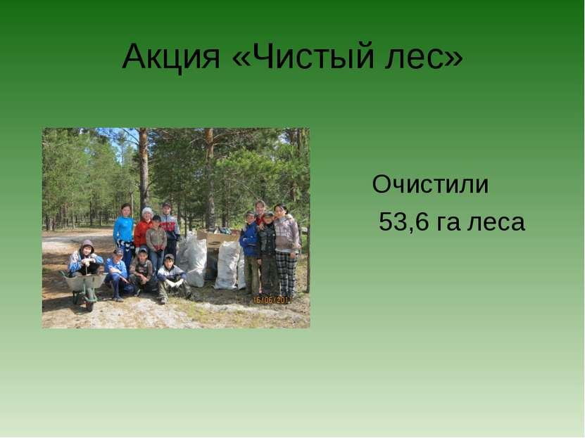 Акция «Чистый лес» Очистили 53,6 га леса