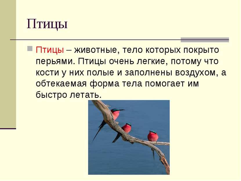 Птицы Птицы – животные, тело которых покрыто перьями. Птицы очень легкие, пот...