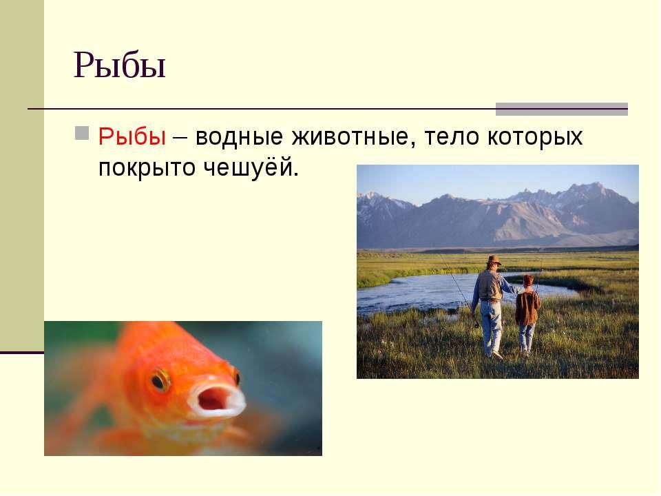 Рыбы Рыбы – водные животные, тело которых покрыто чешуёй.