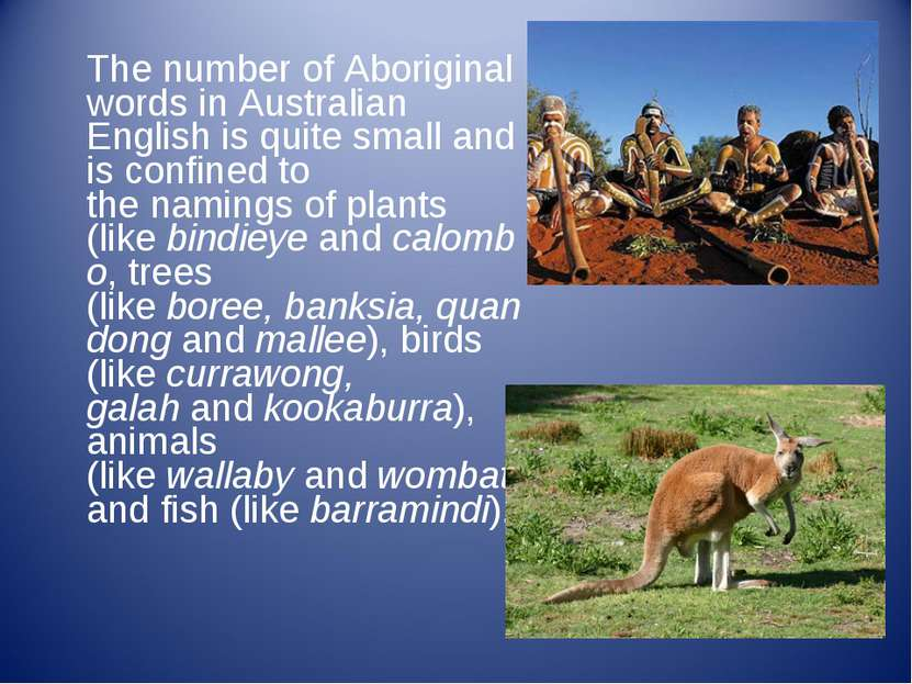 The number of Aboriginal words in Australian English is quite small and is co...