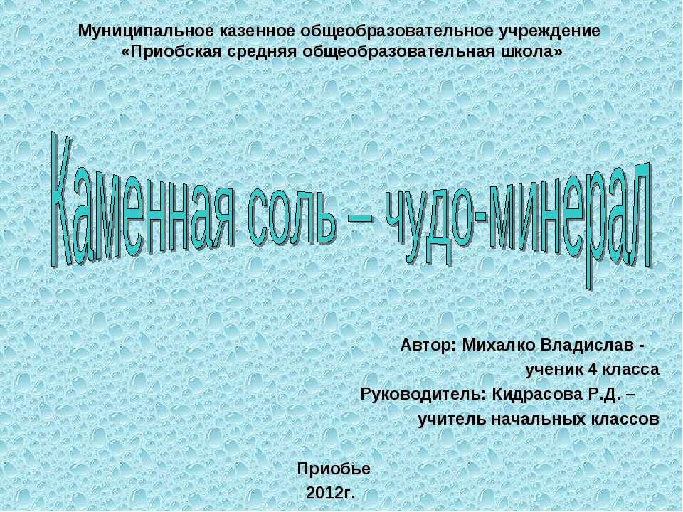 Муниципальное казенное общеобразовательное учреждение «Приобская средняя обще...