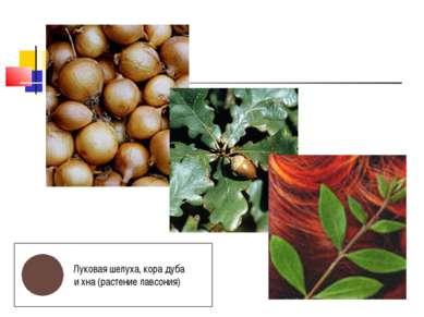 Луковая шелуха, кора дуба и хна (растение лавсония)