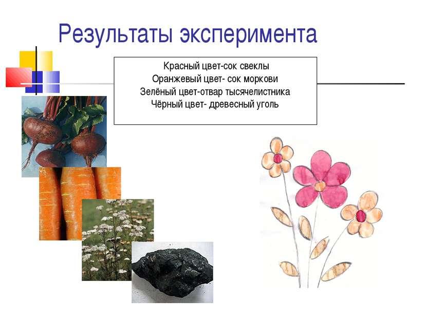 Результаты эксперимента Красный цвет-сок свеклы Оранжевый цвет- сок моркови З...