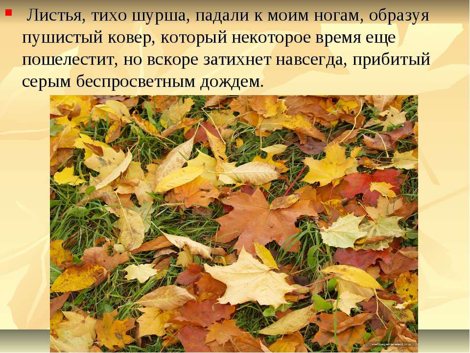 Листья, тихо шурша, падали к моим ногам, образуя пушистый ковер, который неко...