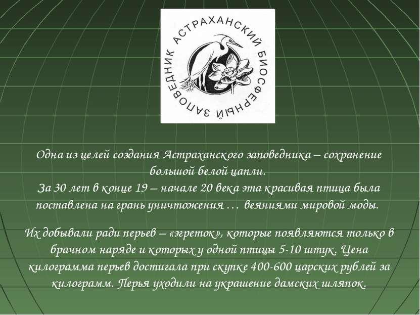 Одна из целей создания Астраханского заповедника – сохранение большой белой ц...