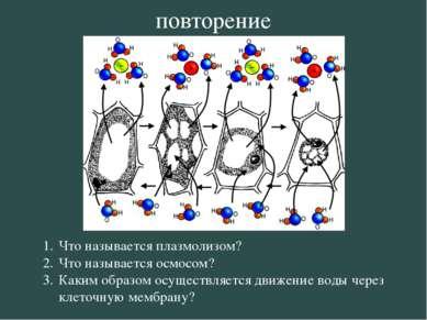 Что называется плазмолизом? Что называется осмосом? Каким образом осуществляе...