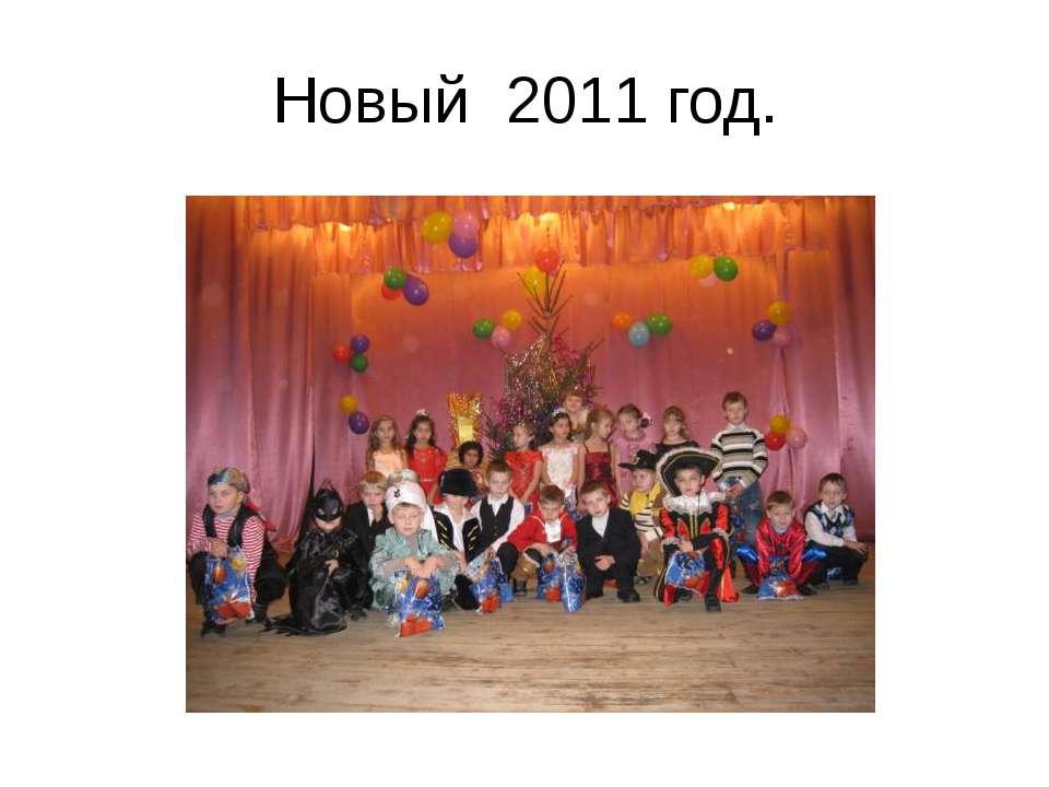 Новый 2011 год.