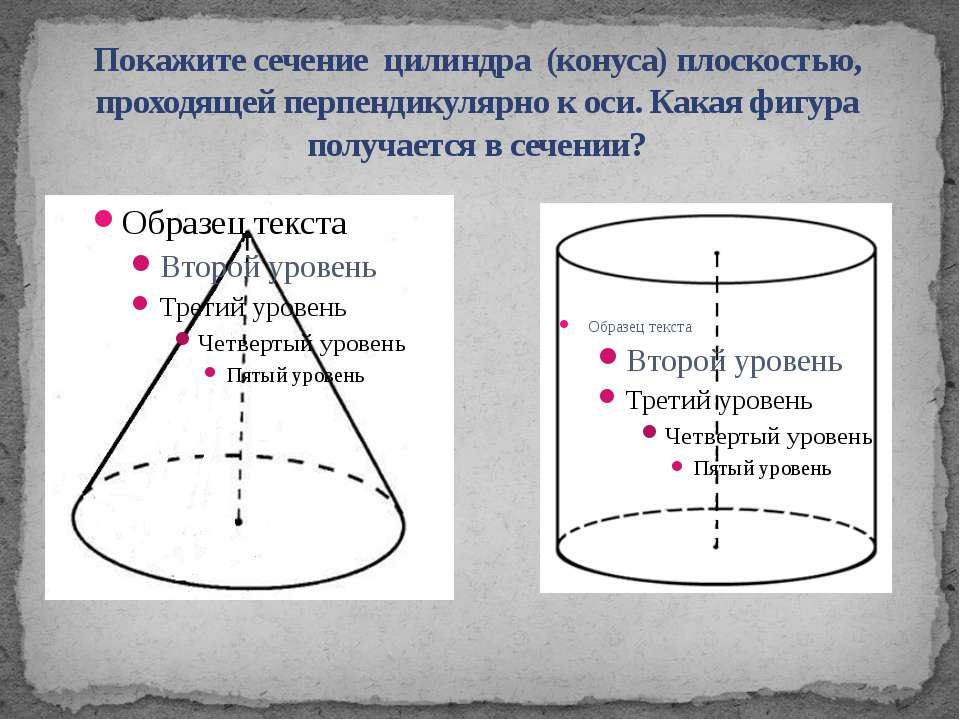 Покажите сечение цилиндра (конуса) плоскостью, проходящей перпендикулярно к о...
