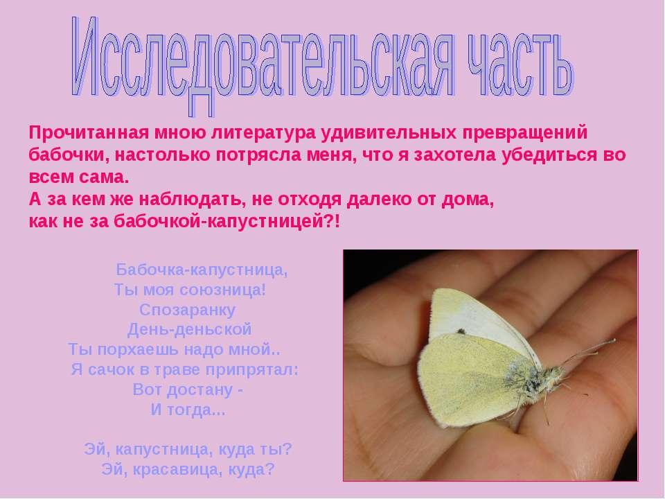 Прочитанная мною литература удивительных превращений бабочки, настолько потря...