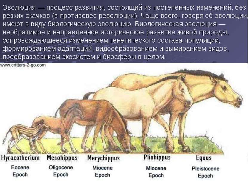 Эволюция — процесс развития, состоящий из постепенных изменений, без резких с...