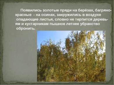 Появились золотые пряди на берёзах, багряно- красные - на осинах, закружились...