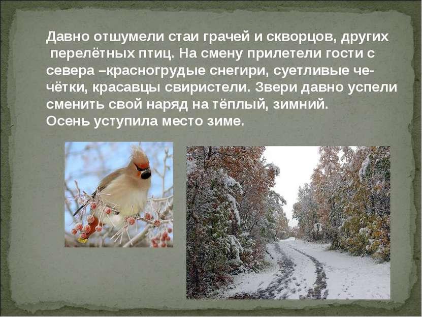Давно отшумели стаи грачей и скворцов, других перелётных птиц. На смену приле...