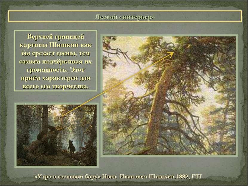 Лесной «интерьер» «Утро в сосновом бору» Иван Иванович Шишкин.1889, ГТГ Верхн...