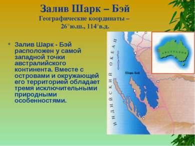 Залив Шарк – Бэй Географические координаты – 26°ю.ш., 114°в.д. Залив Шарк - Б...
