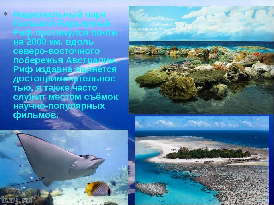 Национальный парк Большой Барьерный Риф протянулся почти на 2000 км. вдоль се...