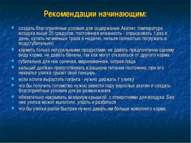 Рекомендации начинающим: создать благоприятные условия для содержание Ахатин:...
