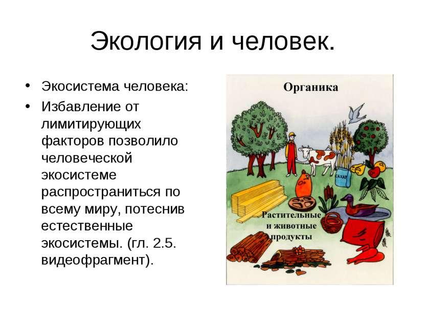 Экология и человек. Экосистема человека: Избавление от лимитирующих факторов ...