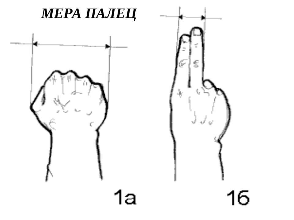 МЕРА ПАЛЕЦ
