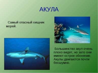 АКУЛА Большинство акул очень плохо видят, но зато они имеют острое обоняние. ...