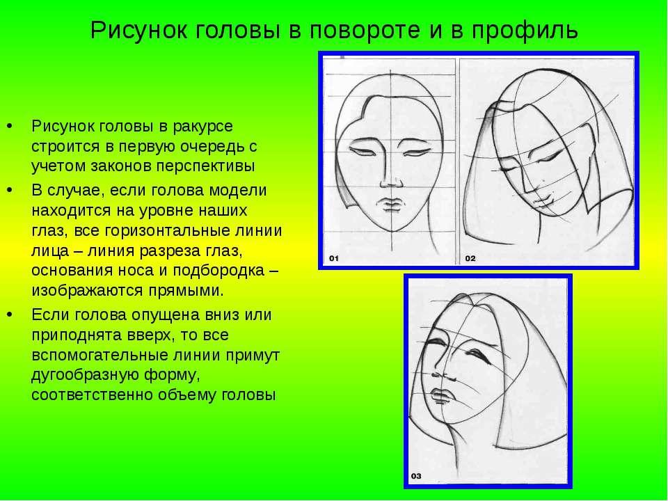 Рисунок головы в повороте и в профиль Рисунок головы в ракурсе строится в пер...