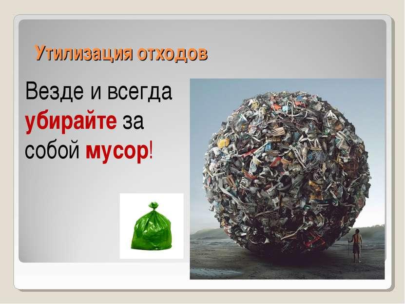 Утилизация отходов Везде и всегда убирайте за собой мусор!