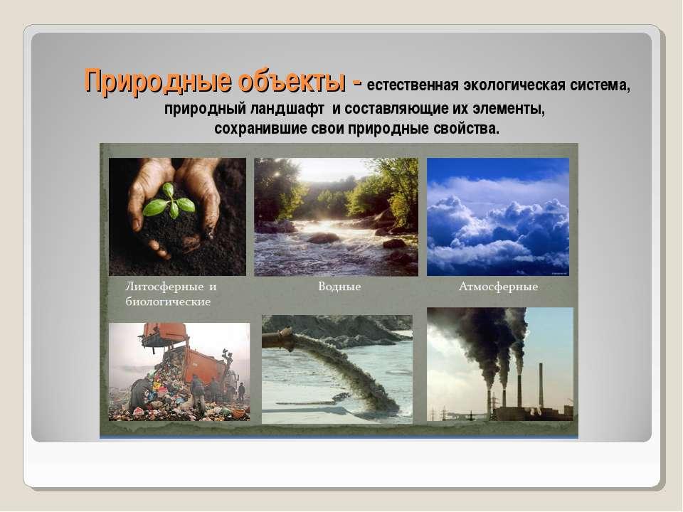 Природные объекты - естественная экологическая система, природный ландшафт и ...
