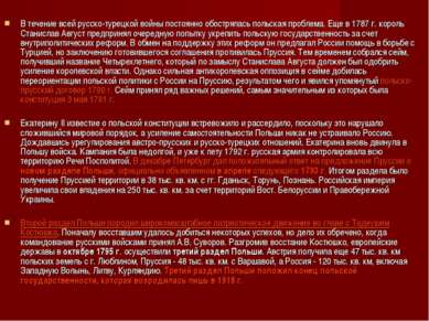 В течение всей русско-турецкой войны постоянно обострялась польская проблема....