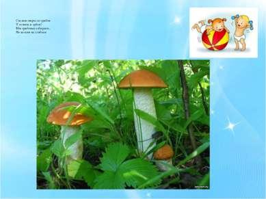 Сколько выросло грибов У осинок и дубов! Мы грибочки собираем, Но колени не с...