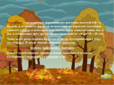 Кустарник—многолетние деревянистые растения высотой 0,8—6 метров, в отличие ...